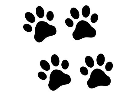 tigre cachorro: Imprime Paw Vectores