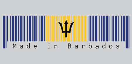 Barcode set the color of Barbados flag, vertical ultramarine and gold color with black trident-head on grey background, text: Made in Barbados. concept of sale or business.