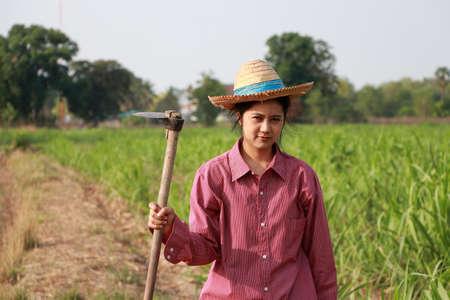 Mujer agricultora con azada en mano trabajando en la finca de caña de azúcar y vistiendo un sombrero de paja con camisa roja de manga larga. Foto de archivo