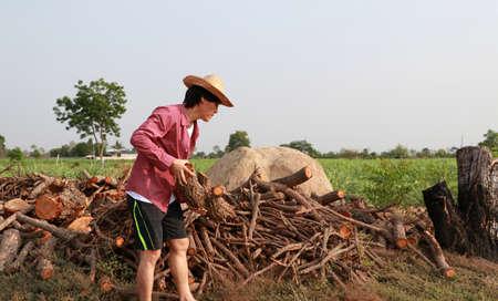 Agriculteur debout et transportant du bois à côté de la pile de bois de chauffage dans la ferme de canne à sucre et portant un chapeau de paille avec une chemise rouge à manches longues.