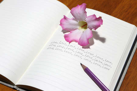 Writing many love words on the book with pencil and pink flower. In love concept.