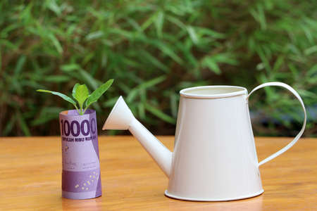 Rolled banknote money ten thousand Indonesia Rupiah and young plant grow up with small white watering can on the wooden floor and green nature background. Concept of money growth or currency interest. 写真素材