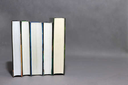 Row of books collection on grey background. Reading or education concept. Archivio Fotografico