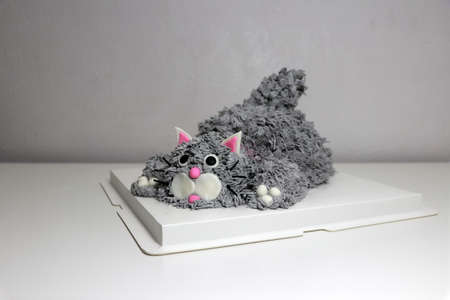 Cake made in the shape of a grey cat. It is doing a crouching pose on a white square paper tray.