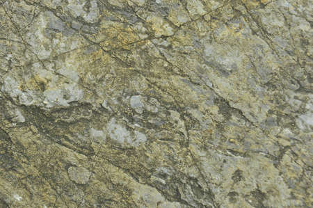 Texture of stone photo
