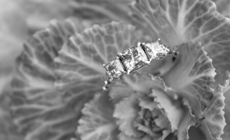 Luxury Diamond Ring Standard-Bild