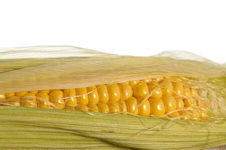Fresh Corn Seeds Close up