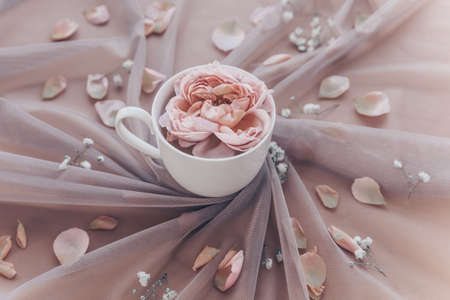 Atmospheric romantic composition with tulle and pink rose in cup. Wedding, love or vintage valentine background, toned to pastel color. Holiday morning coffee. Sunday relaxing and still life concept.