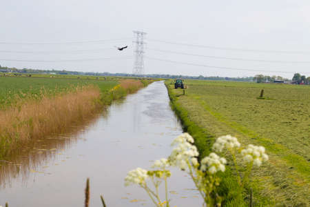 ditch: Grassland with tractor ditch and pylon Stock Photo