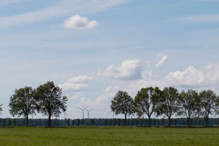windmills: landscape with trees and windmills