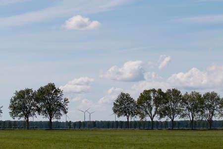 molinos de viento: paisaje con árboles y molinos de viento