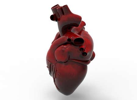 human vein  heartbeat: 3d illustration of heart.