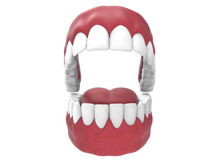 dentin: 3d illustration of opened gum with teeth and tongue. Stock Photo