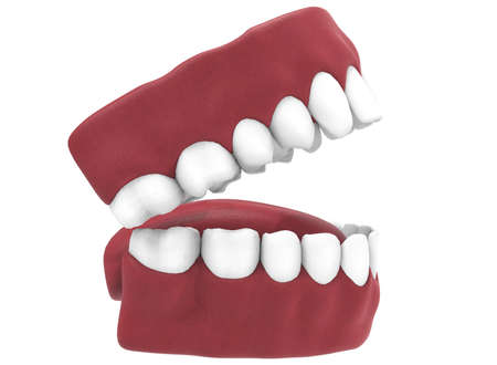 yawn: 3d illustration of opened gum with teeth and tongue. Stock Photo