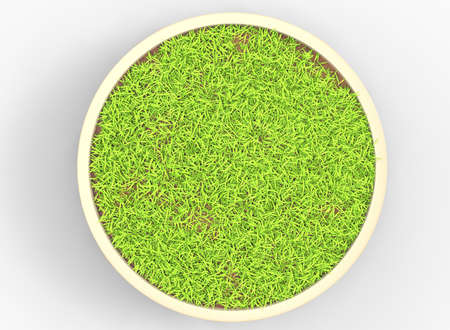 3d illustration of flowerbed with grass. white background isolated. icon for game web. green juicy color. with shadow.
