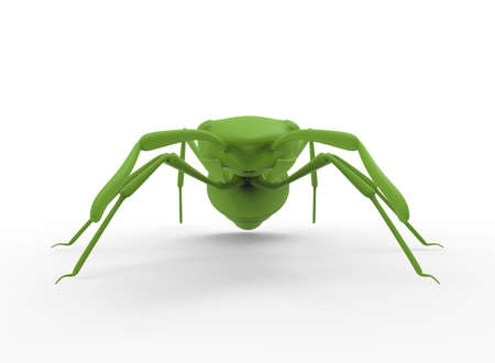 3d illustration of green ant. white background isolated. icon for game web.