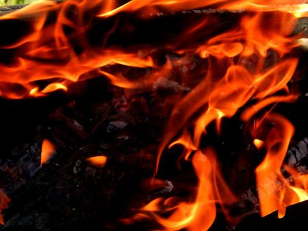 http://us.123rf.com/450wm/avatap/avatap1508/avatap150800407/44168972-пламя-огня.jpg