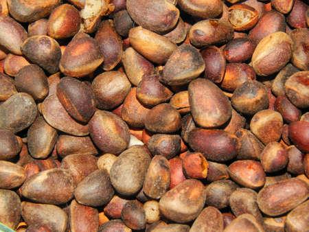 pinoli: Pinoli primo piano