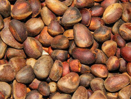 pine kernels: Pine nuts closeup