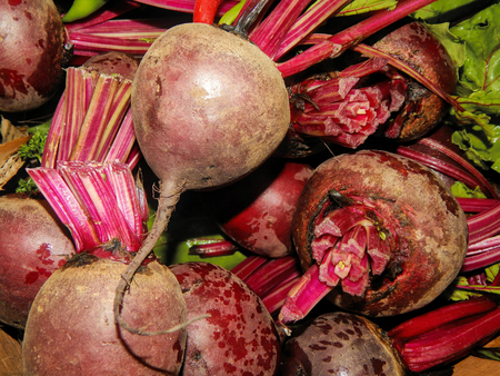 agriculture sri lanka: Fresh beets on the counter