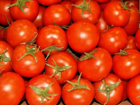 close up: Fresh tomatoes close up