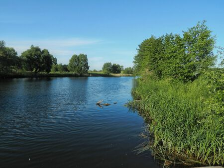 believers: Holy Russia Lake in the Samara region. Place of pilgrimage for believers