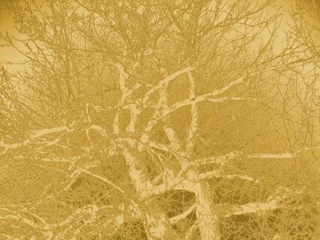golden texture: 3D Illustration. Abstract golden background texture