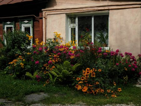 flower bed: Decorative flower bed with flowers under the windows