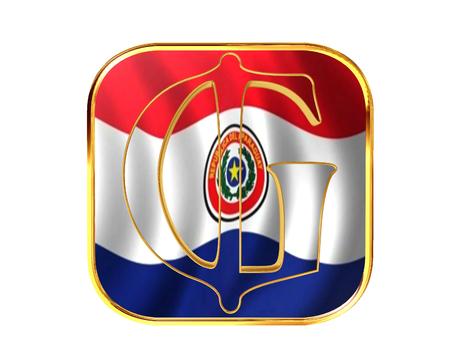 bandera de paraguay: Paraguay Guarani símbolo de moneda en el fondo blanco