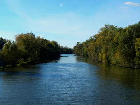 river banks: The river banks with autumn yellow leaves of trees