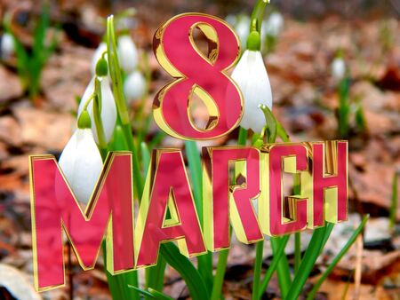 Golden Text March 8 background spring snowdrops