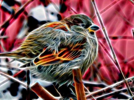 3d illustration. Image of a sparrow on a branch in neon light Stock Photo