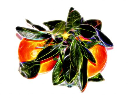 Image of ripe mandarins with leaves in neon light