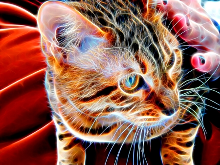 bengal light: 3d illustration. Image of a Bengal cat in neon light Stock Photo