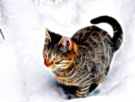3d illustration. Image of a Bengal cat in neon light Stock Photo
