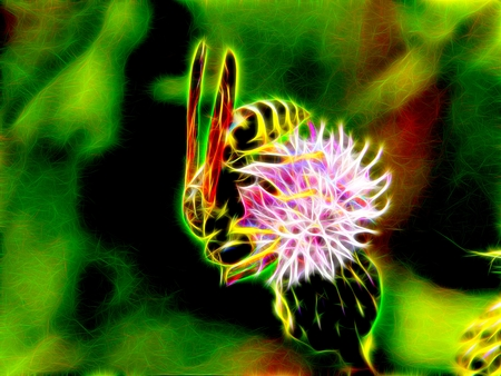 pollinate: Image of a wild wasp on the flowers of a meadow burdock in neon light