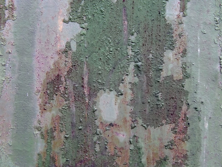 The surface texture of the old metal fence close-up