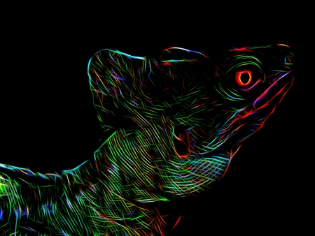 Silhouette of a lizard close-up in a neon light