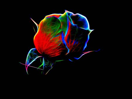 Illustration of a rose in neon color