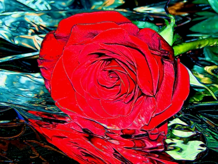 Illustration of a red rose on a silvery background Stock Photo