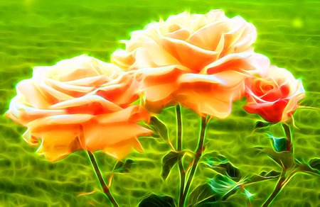 Rose flowers in neon light Stock Photo
