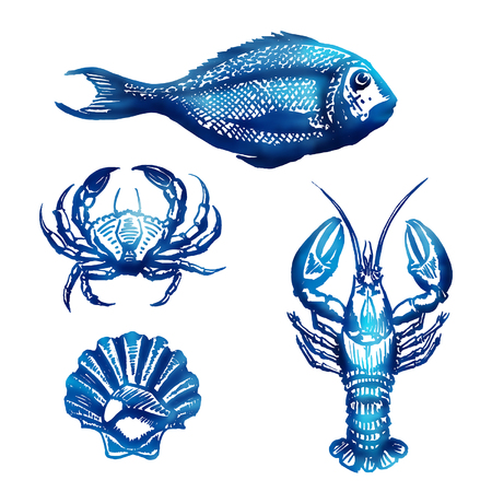 Vector Set of Sketch Sea Food Vector