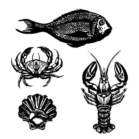 dorado: Vector Set of Sketch Sea Food