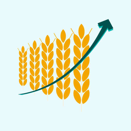 wheat: price growth grain, infographic with graph of increase wheat. agribusiness, agrobusiness Illustration