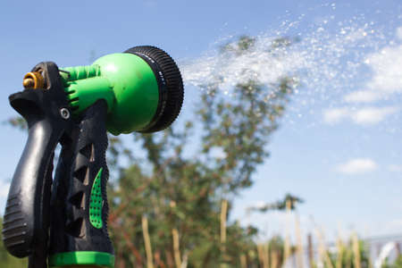 dacha: Watering lawn grass with a shower sprayer head