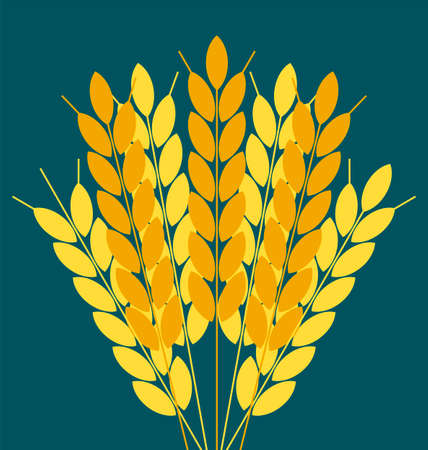 rice plant: Wheat ears or rice icon. Crop symbol. Design element for bread packaging or beer label. Agricultural.