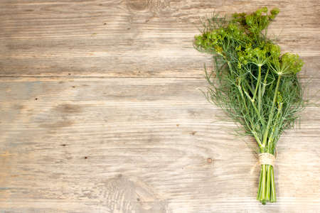 sprigs: Fresh dill sprigs on wooden. Copy space to right. Stock Photo