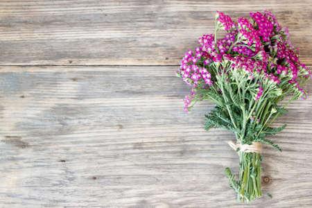 encaje: flor de la milenrama, las plantas a base de hierbas en la mesa de madera con espacio de copia