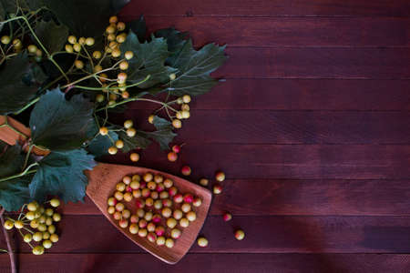 sorb: ashberry on wooden background with copy space Stock Photo