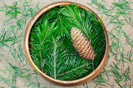 fir cones: Fir cones and branches